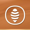 Apiflower Natural Cosmetics logo