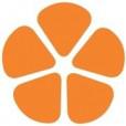 Betsy Lewis Consulting: Social Media Marketing for Nonprofit Organizations logo