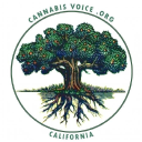 California Cannabis Voice logo
