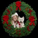 Christmas Forest logo