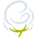 Cotton Babies logo