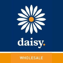 Daisy Wholesale logo