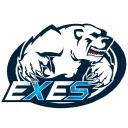 eXeS.eSport logo