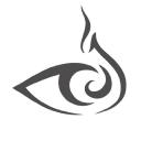 FireEye, Inc. logo