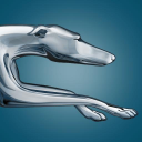 Greyhound Lines, Inc. logo