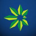 International Cannabis Association logo