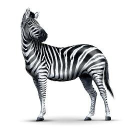 Investec Wealth & Investment UK logo