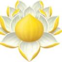 Kerala Ayurveda Limited logo