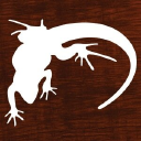 Lounge Lizard Worldwide, Inc. Web Design Company & Mobile App Developer logo