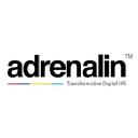 Adrenalin eSystems Ltd logo