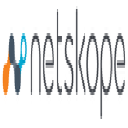 Netskope, Inc logo