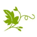 The Ivy Day Spa logo