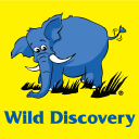 Wild Discovery Travel & Tourism logo