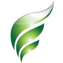 WISErg logo