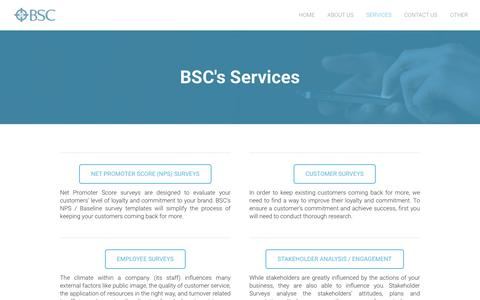 Screenshot of Services Page businesssurveyconsultants.com - BSC - Surveys and Research - Business Survey Consultants - captured Feb. 8, 2016