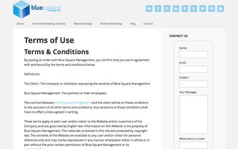 Screenshot of Terms Page bluesquaremanagement.com - Blue Square Management Terms and Conditions - captured Sept. 30, 2014