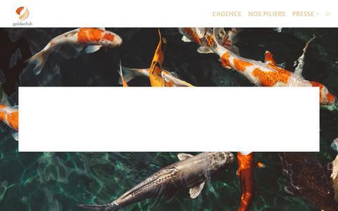 Screenshot of Home Page goldenfish.fr - Goldenfish.fr - Conseil et Services en développement des ventes - captured May 20, 2017