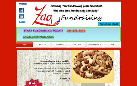 Screenshot of Home Page zagfundraising.com - Zag Fundraising | School Fundraising | Team Fundraising | Fundraisers - captured June 10, 2017