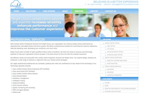 Screenshot of Services Page brightcloudgroup.com - Professional Services - captured Sept. 30, 2014
