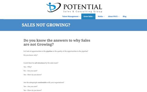 Potential Sales Group | Sales Not Growing?