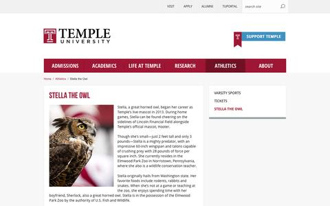 Stella the Owl | Temple University