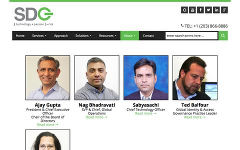 Screenshot of Team Page sdgc.com - SDG Leadership in the IT Industry - captured July 5, 2017