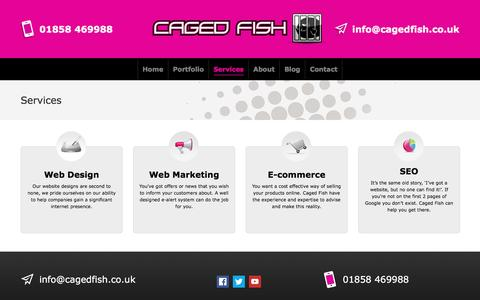 Screenshot of Services Page cagedfish.co.uk - Web design Services Leicester by Caged Fish Web Designers - captured May 13, 2017