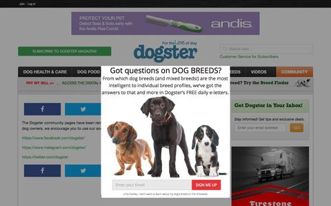 Screenshot of Signup Page dogster.com - Community - Dogster - captured Aug. 2, 2019