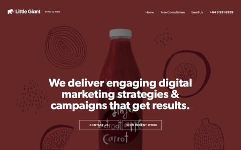 Little Giant - Digital marketing Auckland | Online marketing
