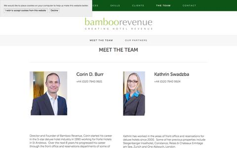 Screenshot of Team Page bamboorevenue.co.uk - Meet the Team — Bamboo Revenue - captured July 28, 2016