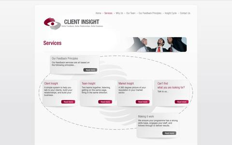Screenshot of Services Page client-insight.com - Services - captured Nov. 2, 2014