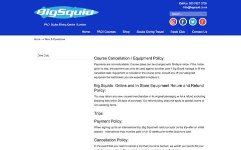 Screenshot of Terms Page bigsquid.co.uk - Term & Conditions – Big Squid - captured Aug. 5, 2018