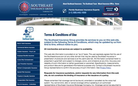 Screenshot of Terms Page southeastinsure.com - Southeast Insurance Group - Web Site Terms of Use - captured Oct. 23, 2017