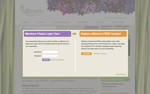 Screenshot of Terms Page ubloom.com - Terms - uBloom Administrator | Everything Flowers at uBloom Administrator - captured Sept. 19, 2014