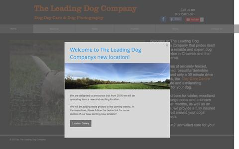 Screenshot of Home Page theleadingdogcompany.co.uk - The Leading Dog Company - Dog Day Care - Chiswick - captured Jan. 11, 2016