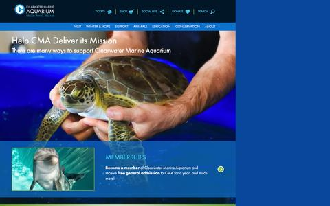 Screenshot of Support Page seewinter.com - Support | Clearwater Marine Aquarium - captured Jan. 18, 2017