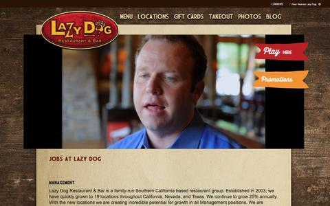 Screenshot of Jobs Page lazydogrestaurants.com - Lazy Dog Restaurant & Bar | Employment - captured Jan. 27, 2016