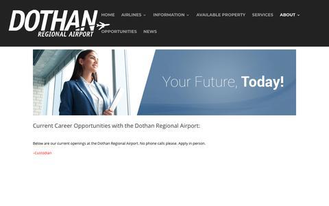 Screenshot of Jobs Page flydothan.com - Careers - Fly Dothan - captured Nov. 14, 2018