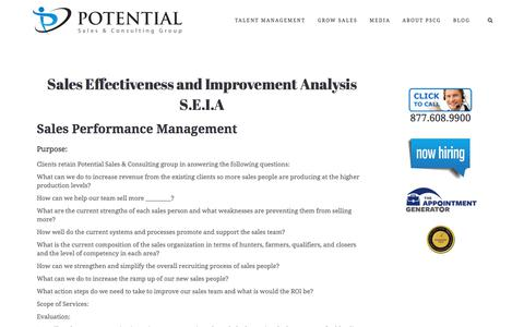 Sales Effectiveness and Improvement Analysis S.E.I.A – Potential Sales and Consulting Group