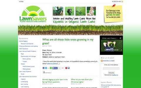 Screenshot of Blog lawnsavers.com - LawnSavers Lawn Care Blog - captured Sept. 29, 2014
