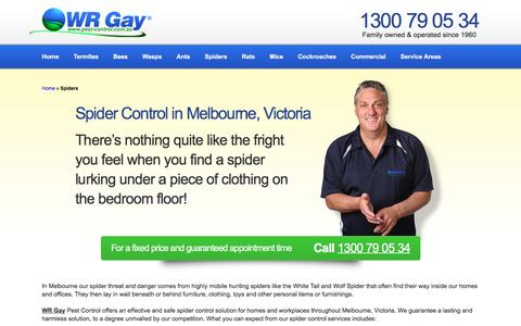 Spider Control & Removal in Melbourne | WR Gay