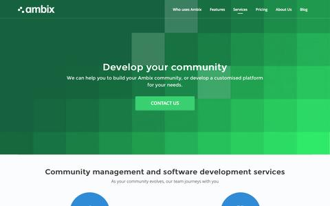 Screenshot of Services Page ambix.io - Additional services | Ambix Team - captured June 27, 2016