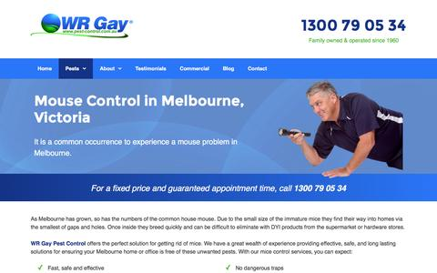 Mice Control & Treatment in Melbourne | WR Gay