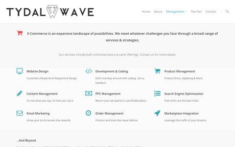 Screenshot of Team Page tydalwavecreative.com - E-Commerce Management | Tydal Wave Creative - captured Sept. 23, 2014