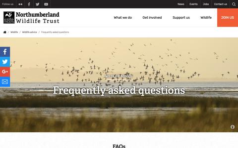 Screenshot of FAQ Page nwt.org.uk - Frequently asked questions | Northumberland Wildlife Trust - captured Oct. 18, 2018
