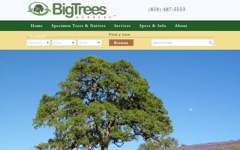 Screenshot of Home Page bigtreesnursery.com - Home | Big Trees Nursery - captured Oct. 5, 2018