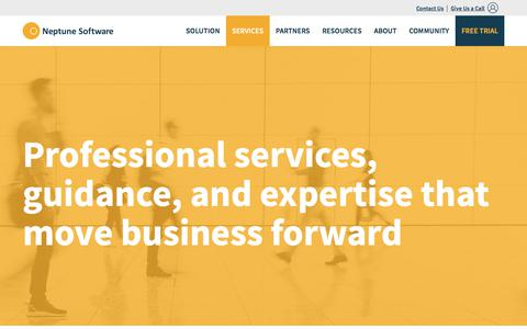 Screenshot of Services Page neptune-software.com - Professional Services, Consulting, On-site Training | Neptune Software - captured Feb. 2, 2018