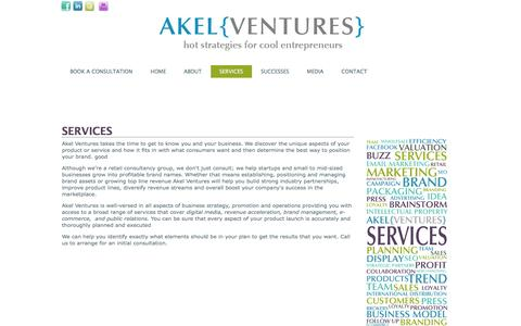 Screenshot of Services Page akelventures.com - SERVICES - captured Feb. 5, 2016