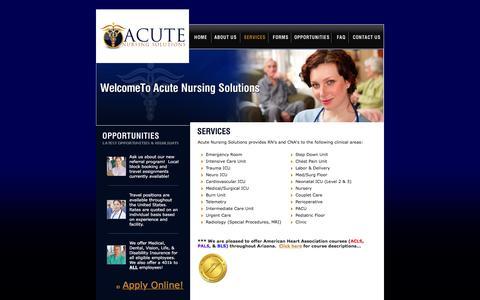 Screenshot of Services Page acutenursingsolutions.com - Acute Nursing Solutions - captured Feb. 5, 2016