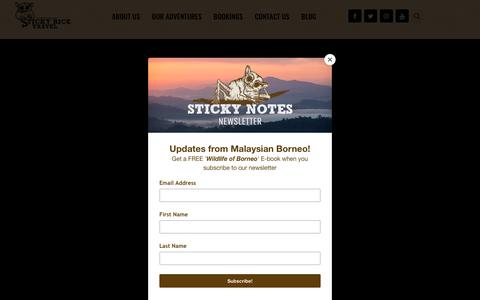 Screenshot of Home Page stickyricetravel.com - Sticky Rice Travel | Meaningful Adventures - captured Jan. 29, 2019